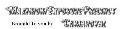 Maximum Exposure Precinct